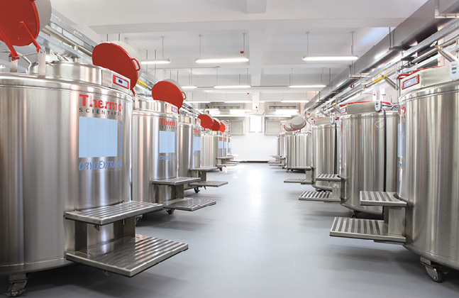 Two Flowcrete Systems Qualify as Cleanroom Suitable Materials